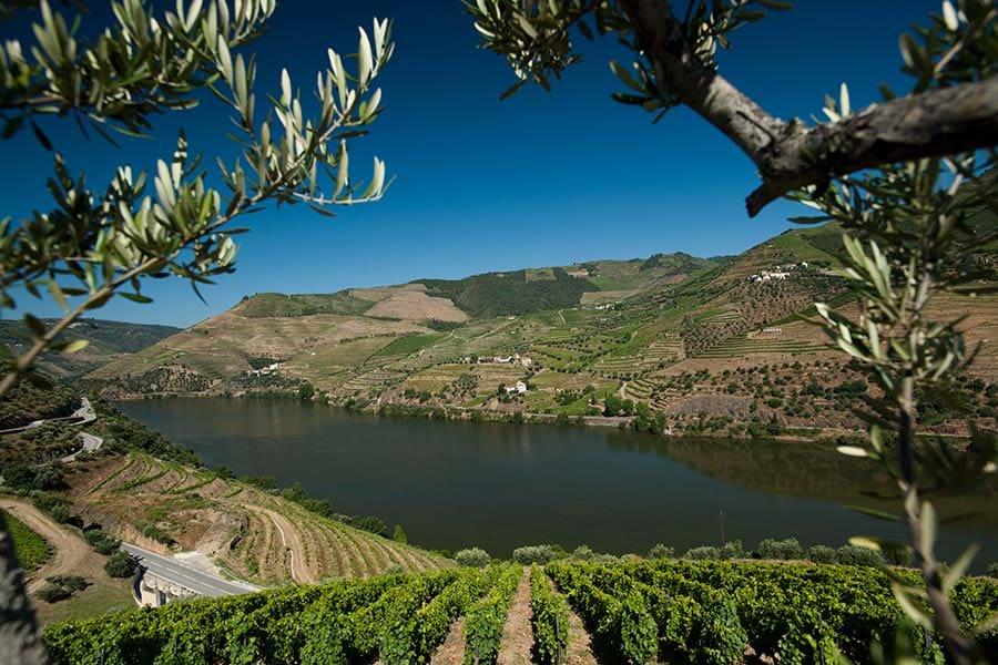 Visit Us Quinta Do Seixo Winery Cellars